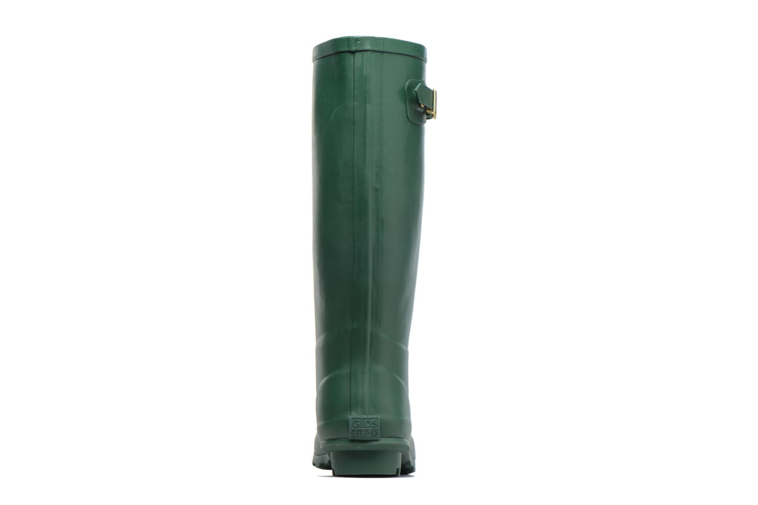 Boots & wellies Gioseppo Londres Green view from the right