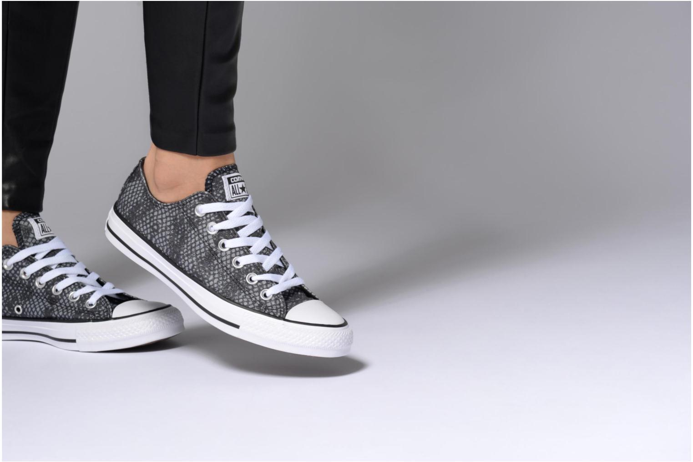 Sneakers Converse Chuck Taylor All Star Lurex Snake Ox Grijs onder
