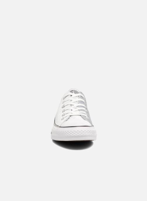 Sneaker Converse Chuck Taylor All Star Velvet Ox grau schuhe getragen