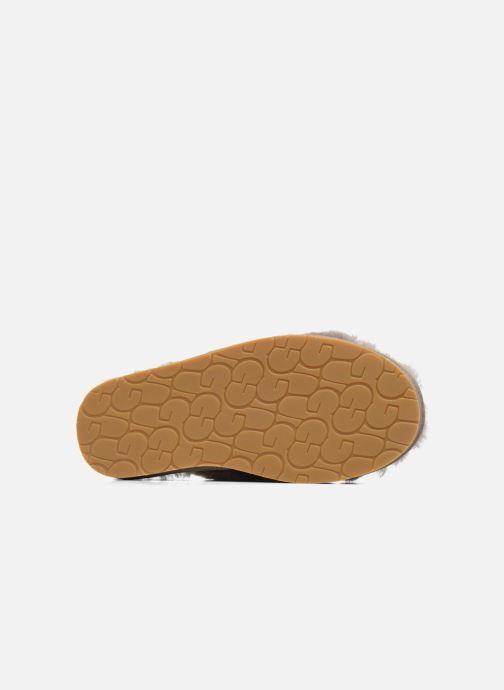 Slippers UGG Abela Beige view from above