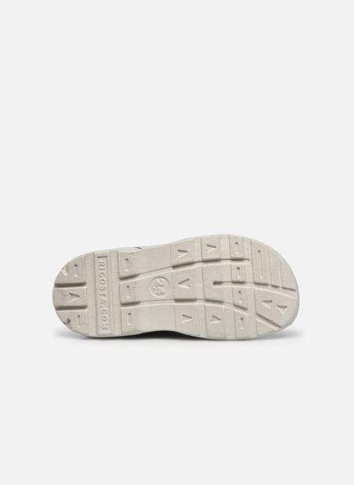Sandali e scarpe aperte Pepino Frankie Azzurro immagine dall'alto