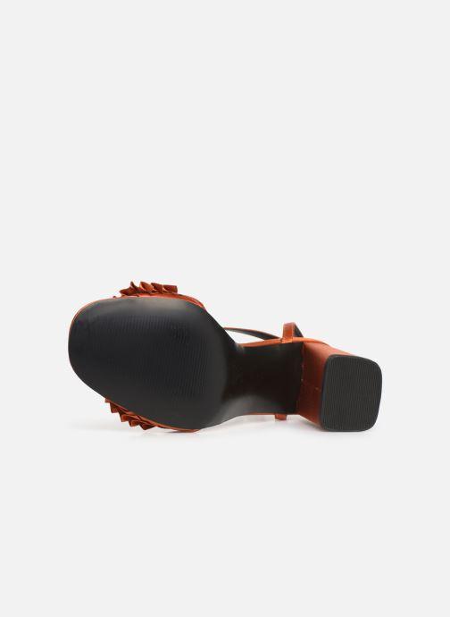 Sandales et nu-pieds Steve Madden Akkrum Sandal Orange vue haut