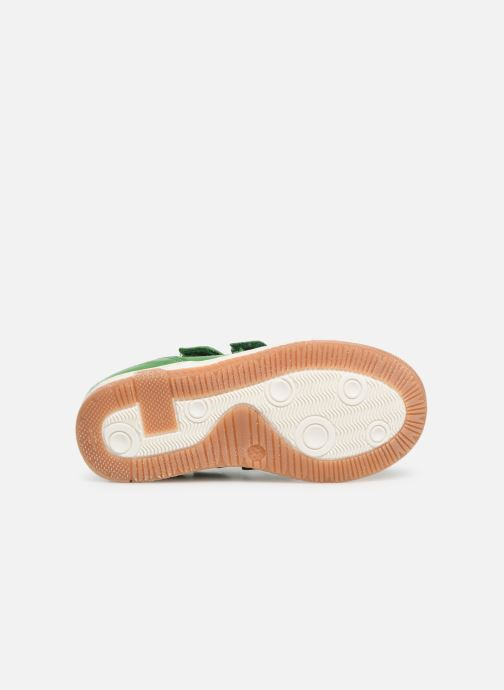 Sneakers Bisgaard Ebbe Verde immagine dall'alto