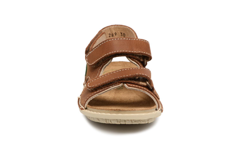 Sandali e scarpe aperte El Naturalista Terra E289 Marrone modello indossato