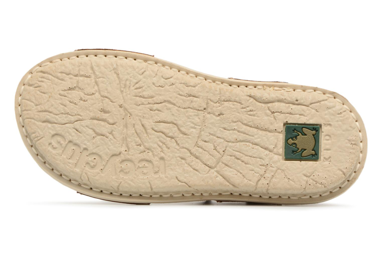 Sandali e scarpe aperte El Naturalista Terra E289 Marrone immagine dall'alto