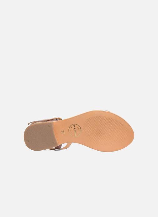 Sandales et nu-pieds Made by SARENZA Carioca Crew Sandales Plates #4 Rose vue haut