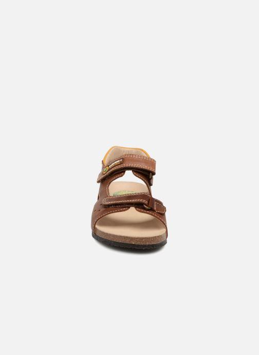 Sandales et nu-pieds Pablosky Eduardo Marron vue portées chaussures