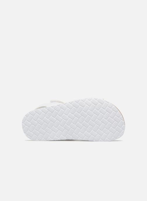 Sandali e scarpe aperte Chicco Hamelia Bianco immagine dall'alto