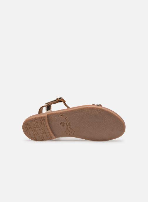 Sandales et nu-pieds Les Tropéziennes par M Belarbi Bada Or et bronze vue haut