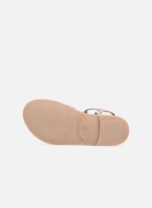 Sandals Les Tropéziennes par M Belarbi Badami Multicolor view from above