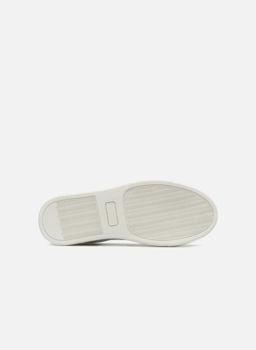 Trainers Pepe jeans Adams Tassels White view from above