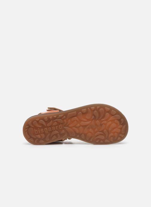Sandali e scarpe aperte Bisgaard Alma Marrone immagine dall'alto