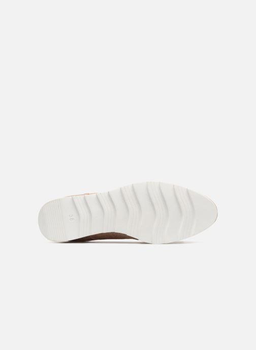 Zapatos con cordones Marco Tozzi Robol Rosa vista de arriba