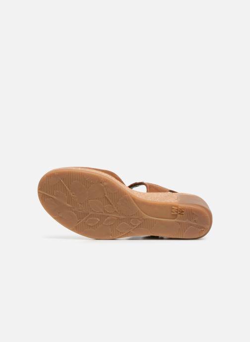 Sandales et nu-pieds El Naturalista Leaves N5001 Marron vue haut