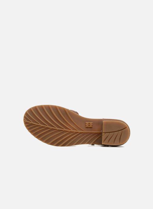Sandales et nu-pieds El Naturalista Sabal N5016 Marron vue haut