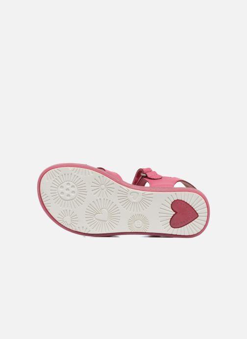 Sandals Agatha Ruiz de la Prada Aitana Pink view from above