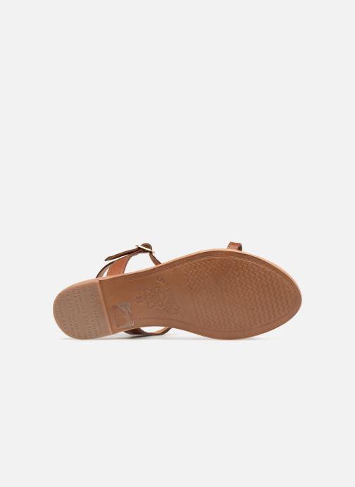 Sandales et nu-pieds Les Tropéziennes par M Belarbi Vahiné Marron vue haut