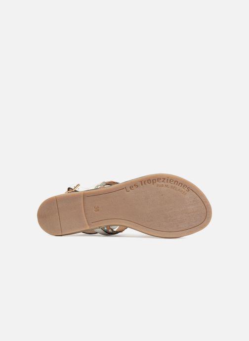 Sandales et nu-pieds Les Tropéziennes par M Belarbi Bridget Blanc vue haut