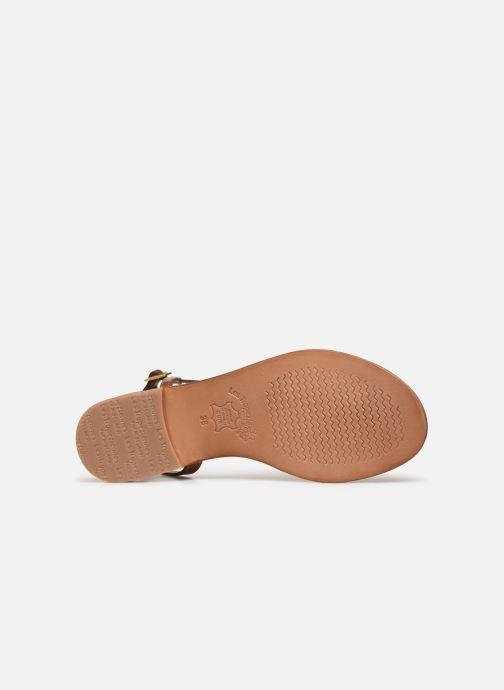 Sandales et nu-pieds Les Tropéziennes par M Belarbi Holidays Marron vue haut
