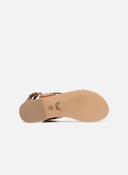 Sandales et nu-pieds Kaporal Moore Marron vue haut