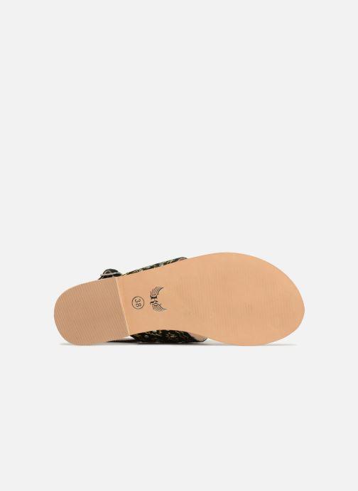 Sandales et nu-pieds Kaporal Moost Noir vue haut