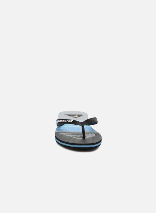 Chanclas Quiksilver Molokai Highline Slab Azul vista del modelo
