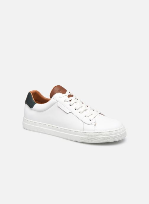 Baskets Homme Spark Clay