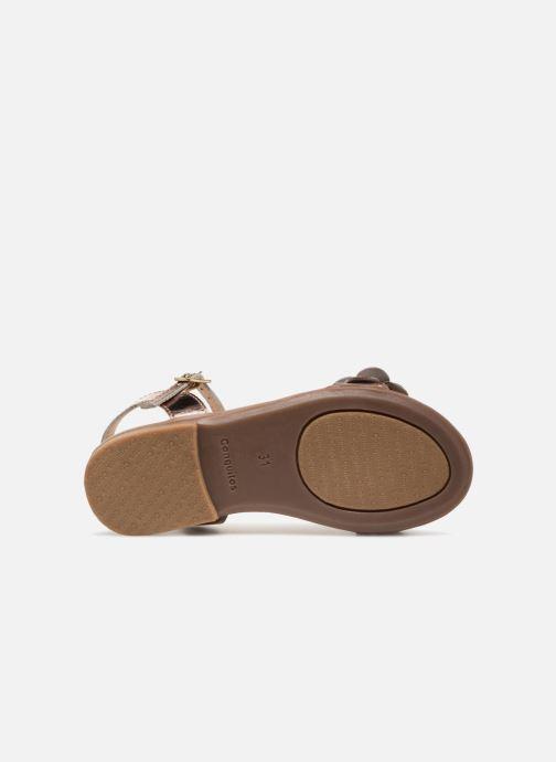 Sandales et nu-pieds Conguitos Carlota Or et bronze vue haut