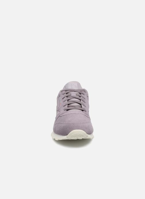 Trainers Reebok Cl Leather Mcc Purple model view