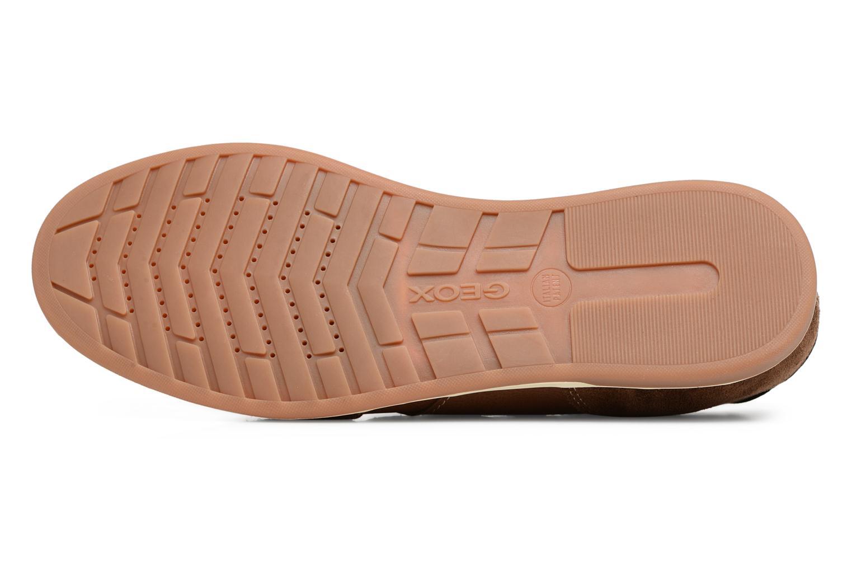 Sneakers Geox U RENAN C U824GC Bruin boven