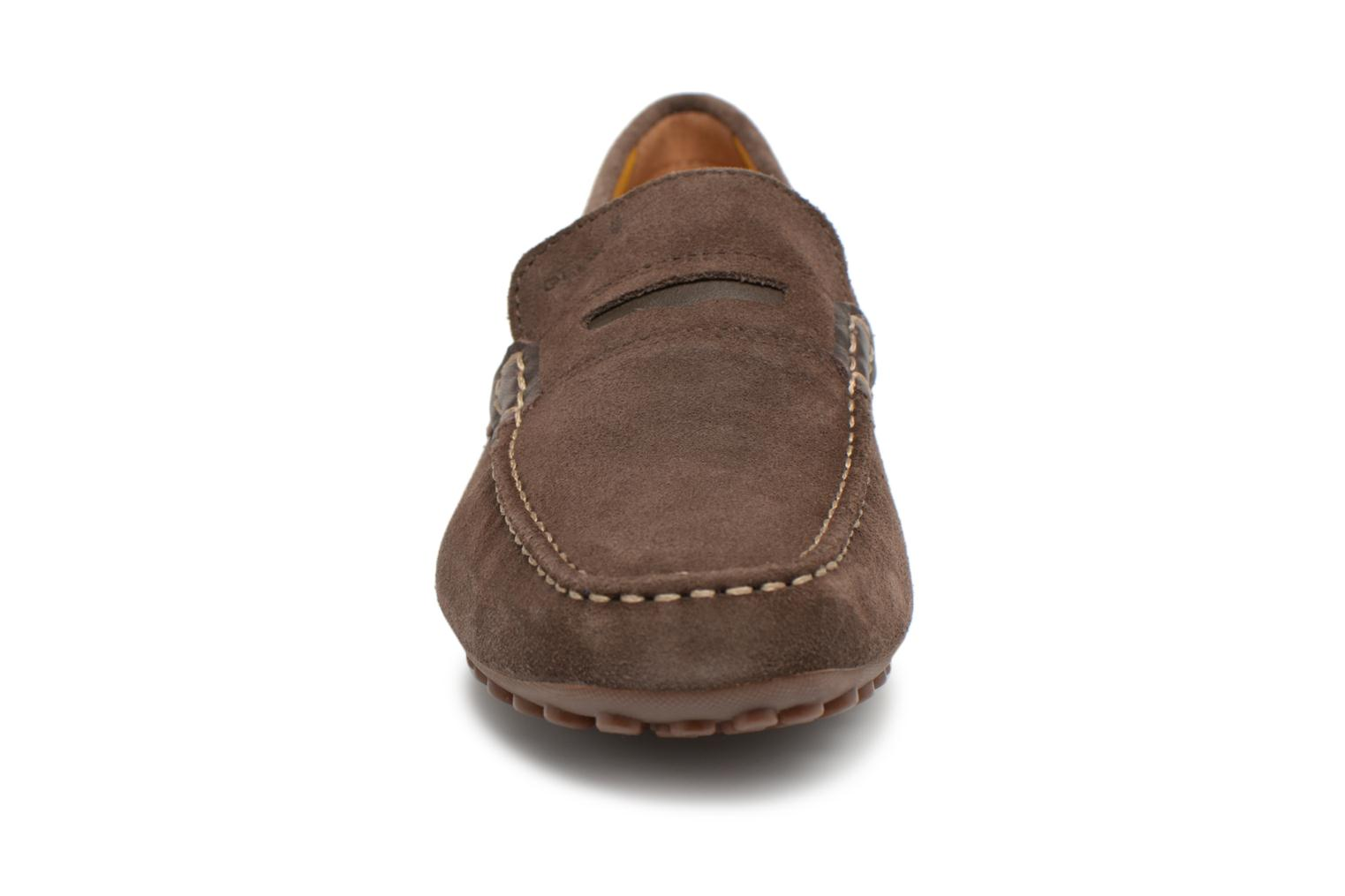 Loafers Geox U SNAKE MOC A U8207A Brown model view