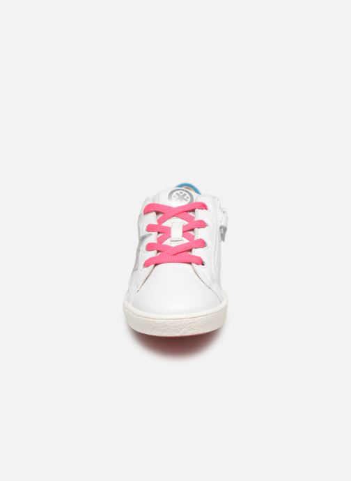 Trainers Acebo's Roma White model view