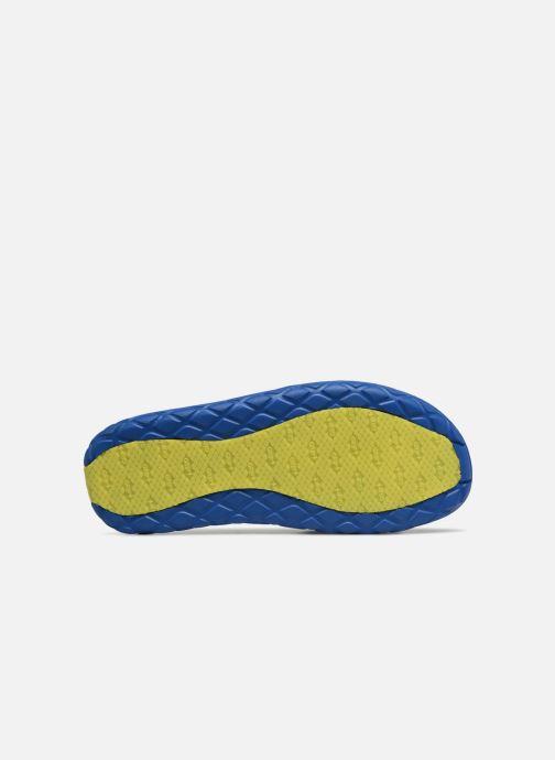 Zapatillas de deporte Arena Watergrip M Azul vista de arriba