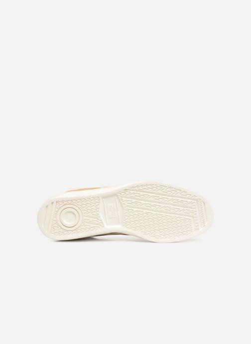 Sneakers Asics Gsm Bruin boven