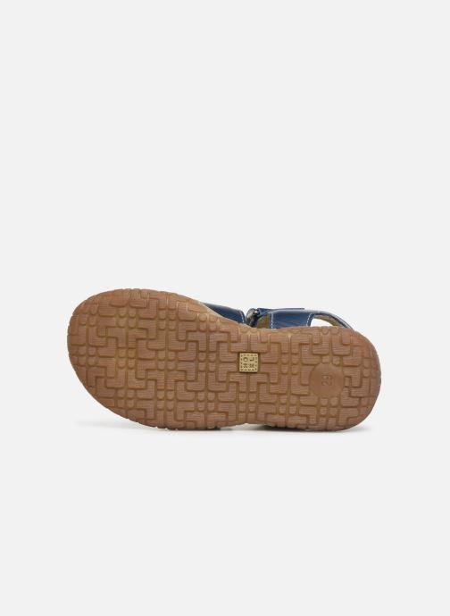 Sandali e scarpe aperte Noël Tylero Azzurro immagine dall'alto