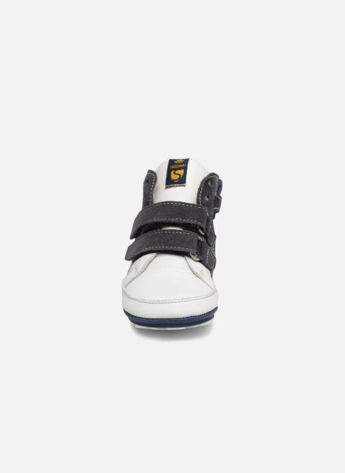 Sneakers Shoesme Sevan Azzurro modello indossato