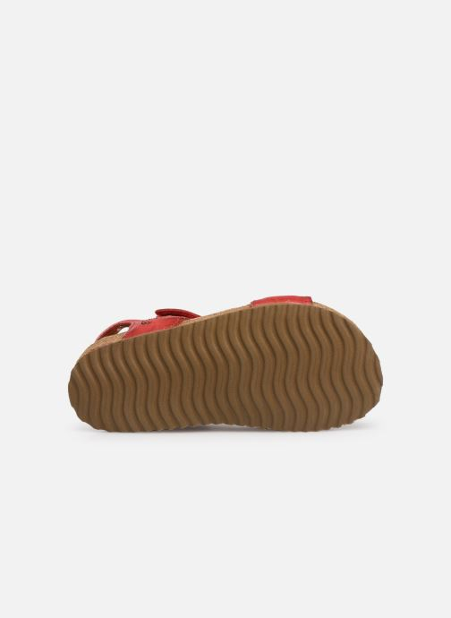 Sandalen Shoesme Sabin Rood boven