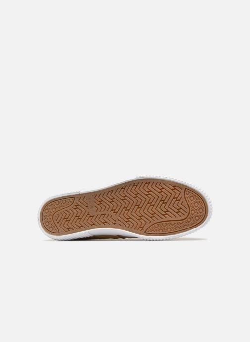 Sneaker Globe Filmore grau ansicht von oben