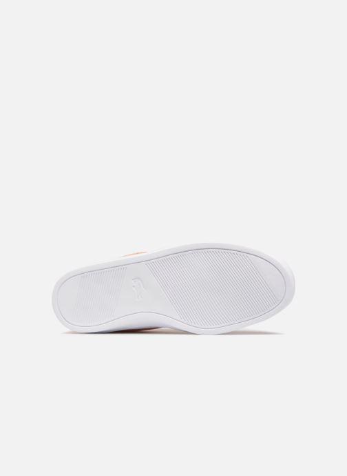 Sneakers Lacoste L.12.12 LIGHTWEIGHT1181 Arancione immagine dall'alto