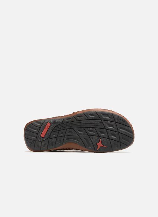 Sandales et nu-pieds Pikolinos Tarifa 06J-5818 Marron vue haut