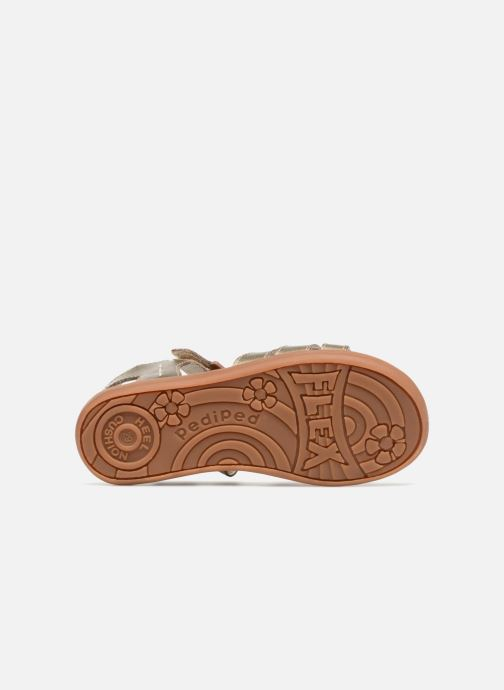 Sandales et nu-pieds Pediped Lynn Or et bronze vue haut
