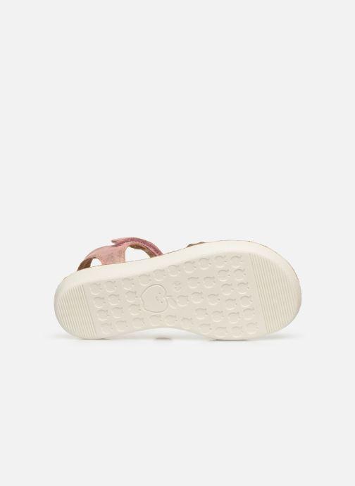Sandales et nu-pieds Shoo Pom Goa Salome Rose vue haut