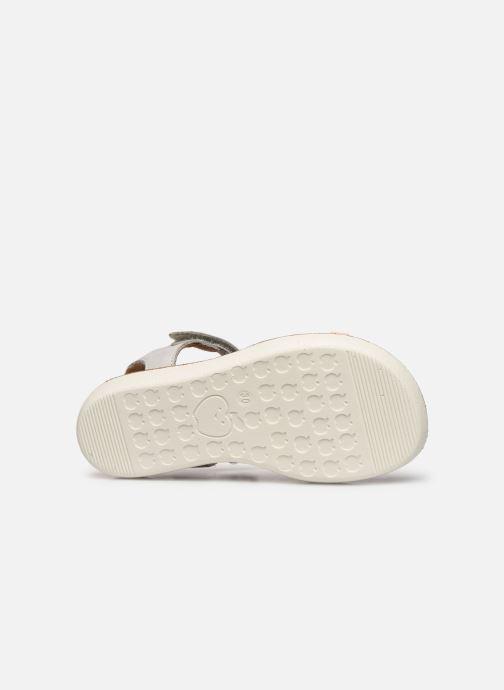 Sandales et nu-pieds Shoo Pom Goa Salome Multicolore vue haut
