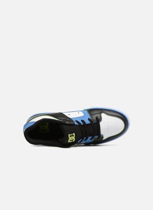 Baskets DC Shoes Pure Elastic SE Bleu vue gauche