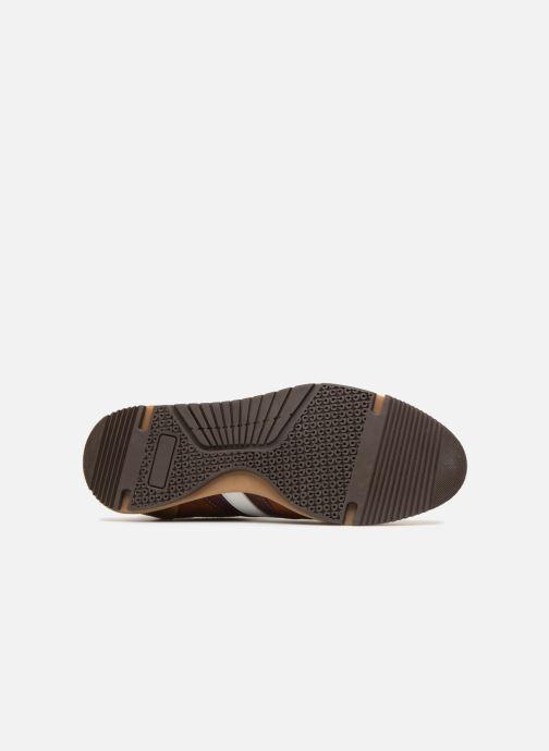Sneakers Marvin&Co Doncaster Marrone immagine dall'alto