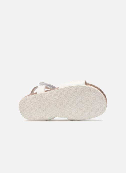 Sandali e scarpe aperte Michael Michael Kors Zia Marsha Way-T Bianco immagine dall'alto