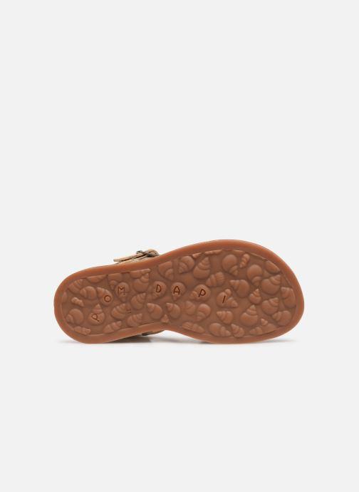 Sandales et nu-pieds Pom d Api Plagette Daisy Or et bronze vue haut