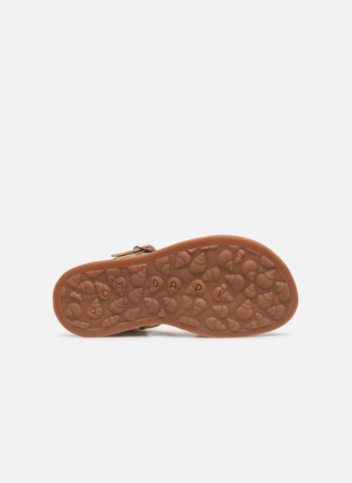 Sandals Pom d Api Plagette Daisy Bronze and Gold view from above