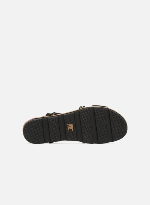 Sandales et nu-pieds Sorel Torpeda Sandal II Noir vue haut