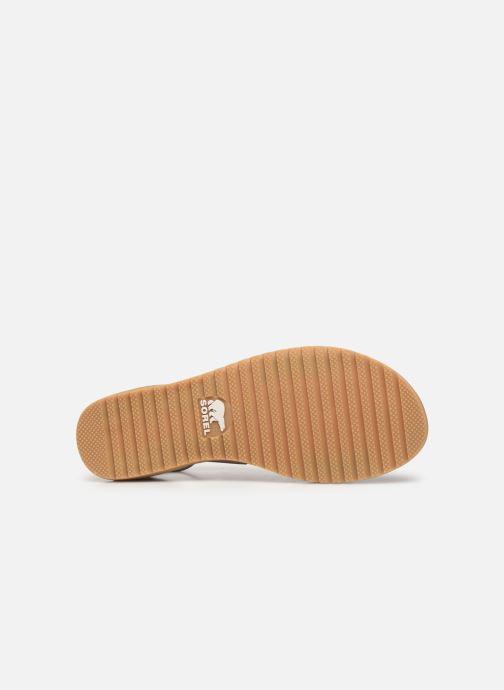Sandales et nu-pieds Sorel Ella Sandal Gris vue haut